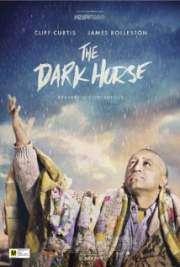 Download The Dark Horse 2014 Movie